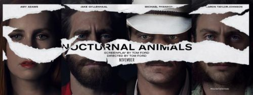 nocturnal-animals-title-banner