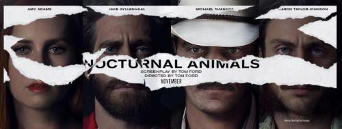 nocturnal-animals-title-banner